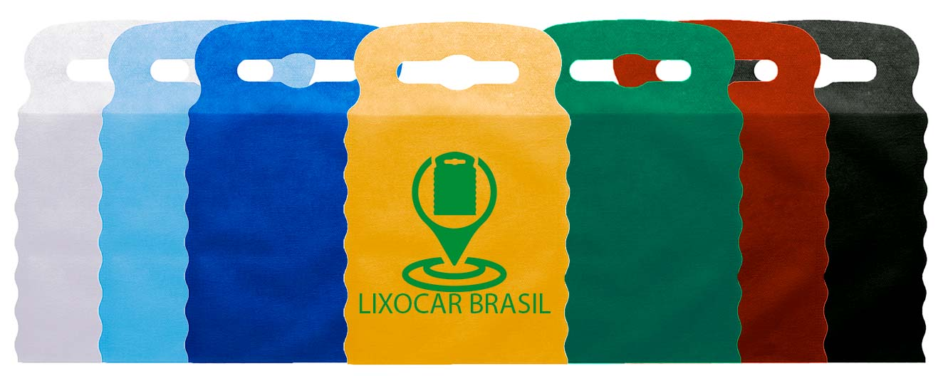 Lixocar Brasil - Capa